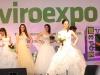 viroexpo2013-156